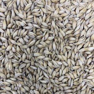 TEXMALT -Texas Distillers Malt